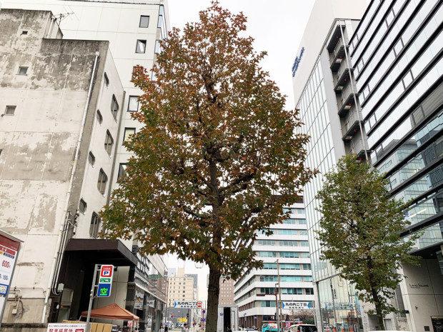 名古屋中区丸の内でホームページ制作