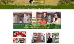 クワガタ生体・蝶標本・昆虫販売と卸の株式会社アリスト